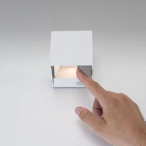 rex-forlight